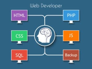 web develop infograph