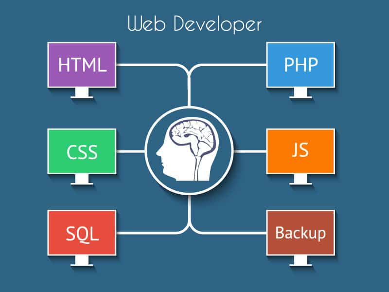 web develop infograph